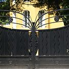 butterfly gate, Provence, France by BronReid
