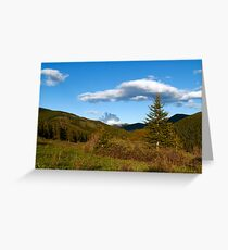 Wild coniferous  Greeting Card
