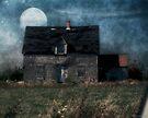 Blue Moon Rising by RC deWinter