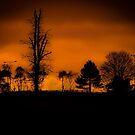 Sunset by JakeHallPhotos