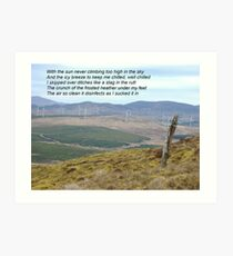 Donegal Disinfectant at Work Art Print
