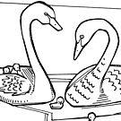 Black swan, coloring book image by Gwenn Seemel
