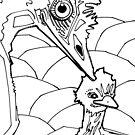Emu, coloring book page by Gwenn Seemel