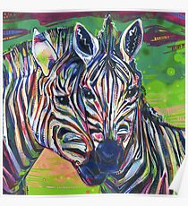 Zebras painting - 2012 Poster