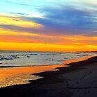 Serene Beach Sunset by Cynthia48