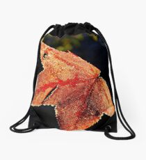 Iced Amber Fall Drawstring Bag