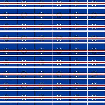 Bandera/ Flag (Pattern) by SkolaNobu