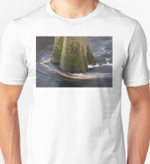 Cypress Tree T-Shirt