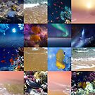 Sealife And SeaShore Collage by Hurmerinta by hurmerinta