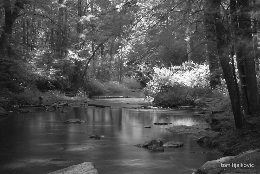 Kilgore Stream in Black and White by tom fijalkovic
