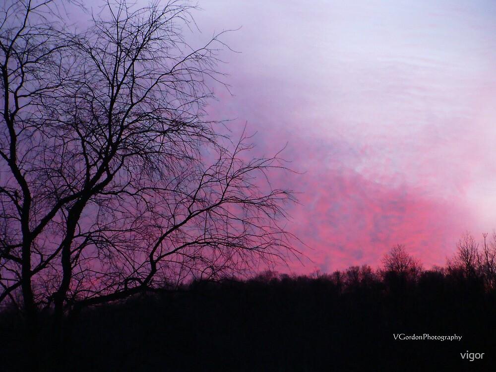 Pink Sky At Night by vigor
