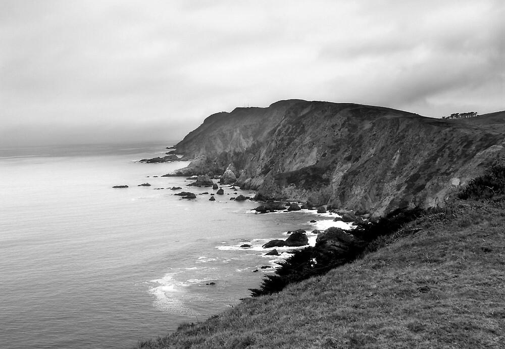 Chimney Rock #2, California Coast by Richard Mason