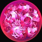 *PAPER ROSES* by Van Coleman