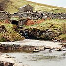 Yorkshire Stream by alice-anne