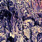 Purple rocks texture by chihuahuashower