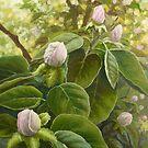 waiting springtime by edisandu