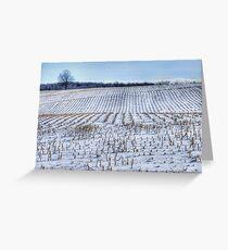 Corn Rows Greeting Card