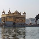 Golden Temple, Amritsar by vardoske