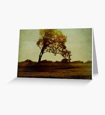 carte postale / 024 Greeting Card