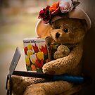 Bärengeschichten: Eine Zeit zum Pflanzen von Corri Gryting Gutzman