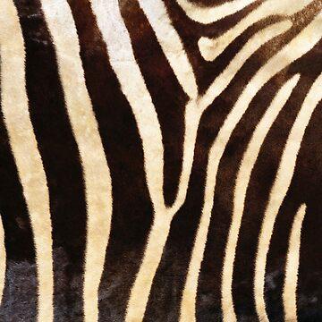 Zebra Fur Print by 4Craig