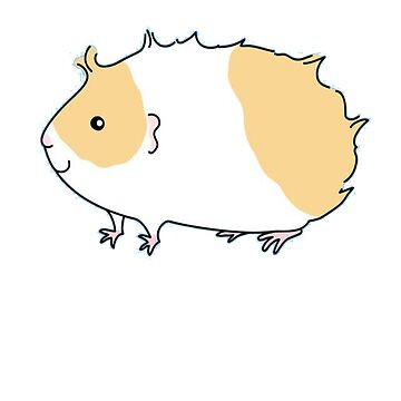 Cute Guinea Pig - Guinea Pig Drawing - Guinea Pig Lovers - Guinea Pig Gift by Galvanized