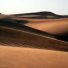 Desert by PaulineC
