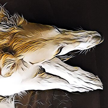 Sleeping  Borzoi  by tcarey