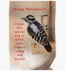 Happy Valintines Day!!! Poster
