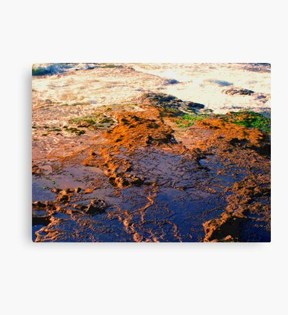 Tide Pool photo painting Canvas Print