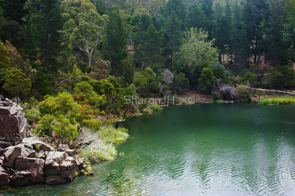 Cataract Gorge by SharonJH