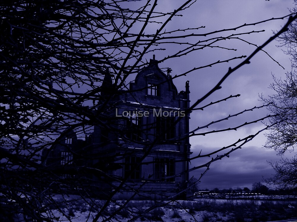 The Watcher by Louise Morris