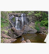 Stevensons Falls Reflection Pond Poster