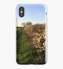 Grassy Oxfordshire Lane in the Evening Sunshine iPhone Case