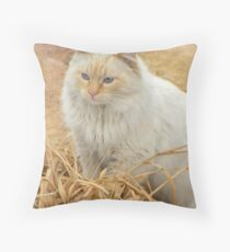 Soft Contemplation Throw Pillow