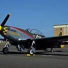 North American Aviation P51 Mustang Airplane by TeeMack