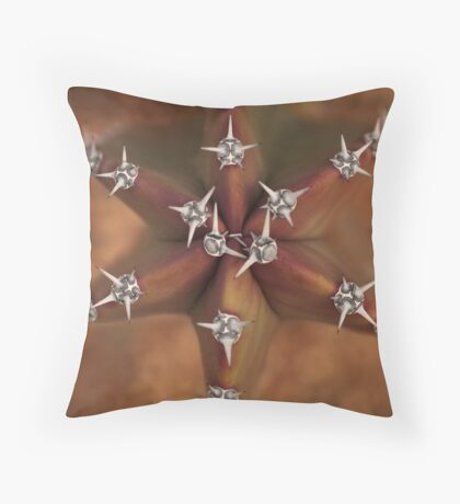Jeweled Star Throw Pillow