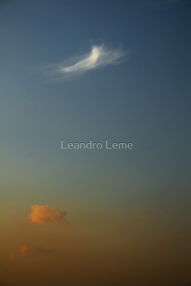 Natural Brushes by Leandro Leme