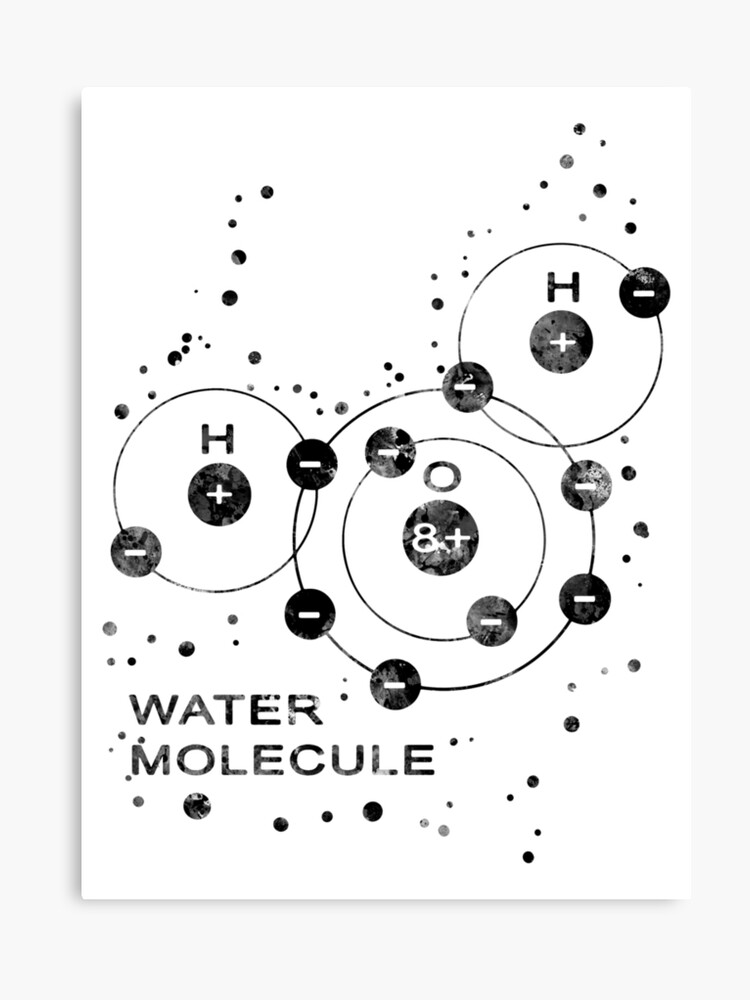 Water Molecule Canvas Print By Rosaliartbook
