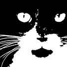 """""""Cat Print/My Patch"""" Abstract Graphic Black and White Feline Face (more black) - Jenny Meehan by Jenny Meehan"""