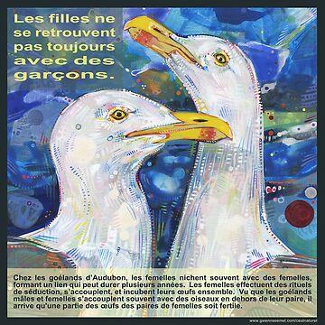 Léger comme un oiseau (Le goéland d'Audubon) by gwennpaints