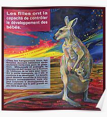 Le choix (Le kangourou roux) Poster