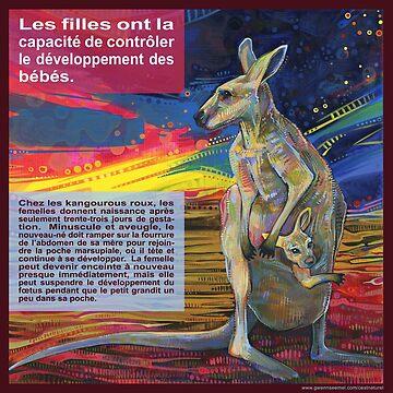 Le choix (Le kangourou roux) by gwennpaints