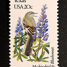 1982 20c Texas State Bird & Flower Postage Stamp by Chris Coates