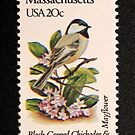 1982 20c Massachusetts State Bird & Flower Postage Stamp by Chris Coates