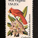 1982 20c West Virginia State Bird & Flower Postage Stamp by Chris Coates