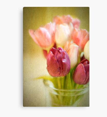 Tulips in Glass Vase Canvas Print
