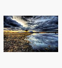 Willow Winter Clouds Photographic Print