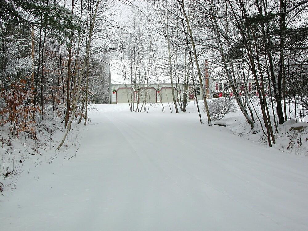 Winter scene from Northwood, New Hampshire by Jane Bouchard