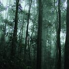 Forest in the Mist by M. Fittock